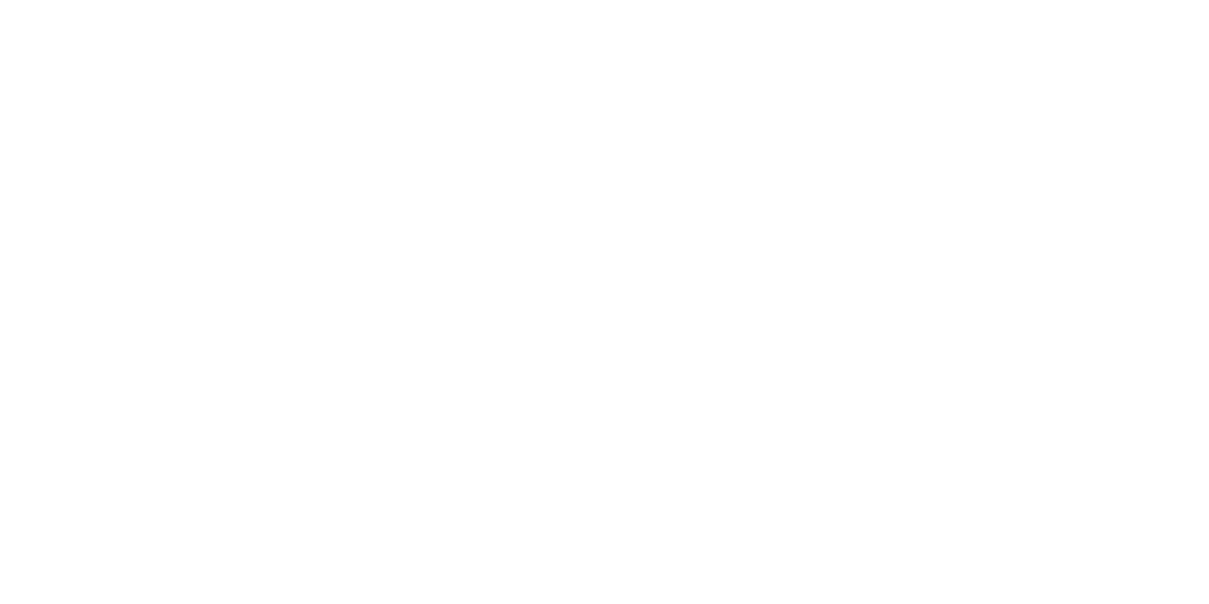 NW Logo White png